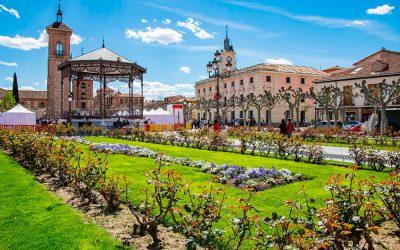 ¿Qué visitar en Alcalá de Henares?