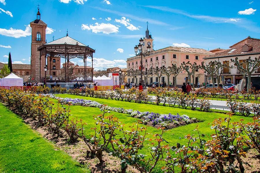 rutas turísticas por madrid. Alcalá de Henares